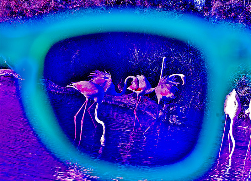 Quattr'occhi sul mondo